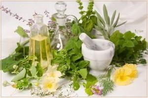 лечебные-травы